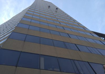 ANSI Professional Window Cleaners